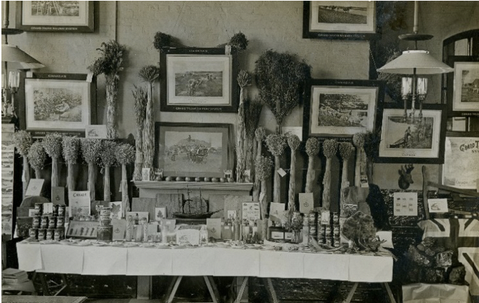 Display at a school supplied by Kew's Museum of Economic Botany, 1914 (© RBGK)
